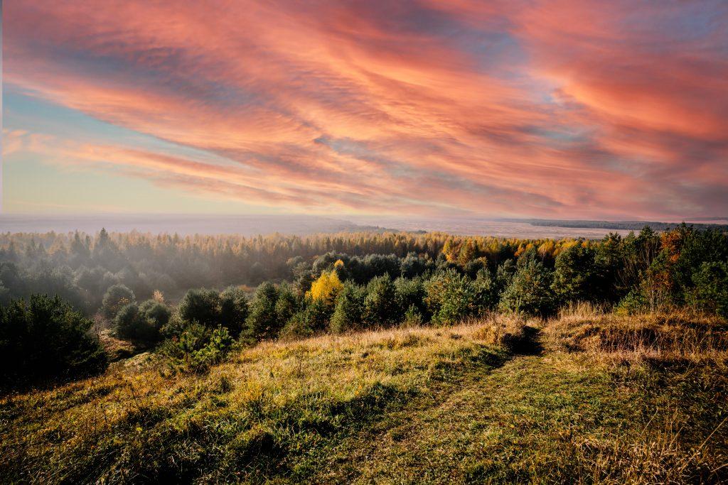 Wyróżnienie 3 Mrówka Sylwia SP w Ryczówku kl. VI Jesień_zachód słońca